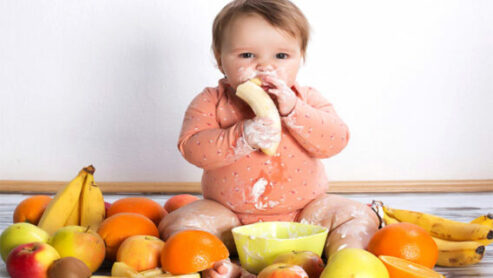10 Baby Food for 3-Year-Olds: